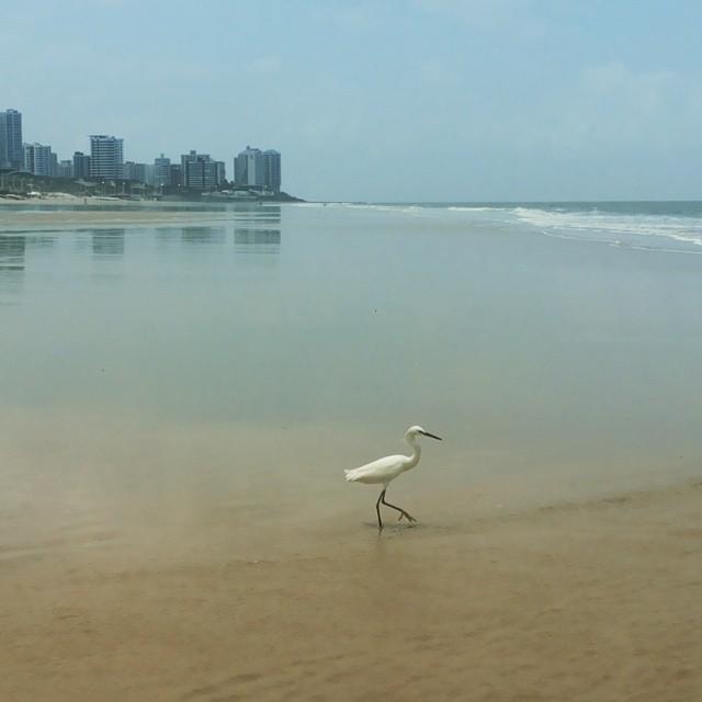 Praia de São Marcos - São Luís